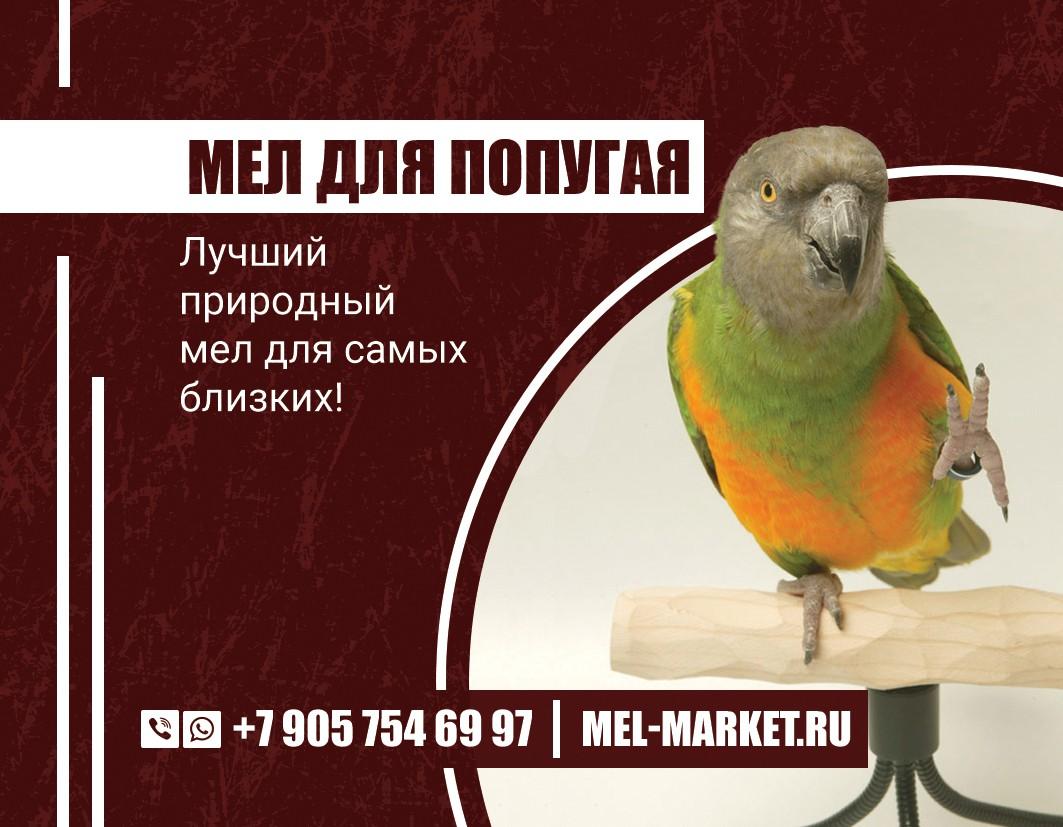мел для попугаев